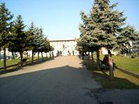Cimitero Abbadia Stura