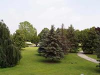 Cimitero Parco