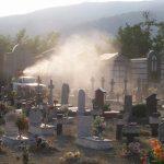 Partita nei cimiteri la lotta contro le zanzare