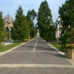 """Al Castello del Valentino, mercoledì 11 luglio alle 14,30,incontro su:""""Il verde cimiteriale. Un patrimonio prezioso per la comunità torinese"""""""